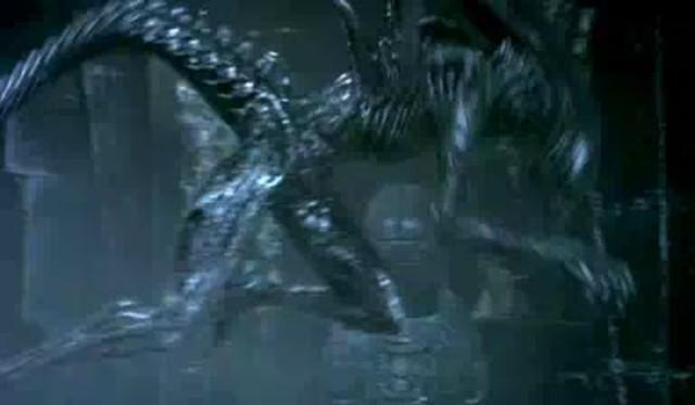 Aliens vs. Predator Video 3