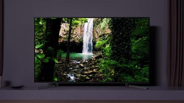Sony - Bravia XG95/X95G Serie Video 3